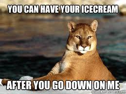faafab24436d8ed6bf851470c85c4746dd21a47ace80ea7aa278bcbd4d0c2e90 insanity cougar memes quickmeme,Cougar Memes