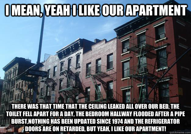 I mean, yeah i like our apartment there was that time that the ceiling leaked all over our bed, the toilet fell apart for a day, the bedroom hallway flooded after a pipe burst,nothing has been updated since 1974 and the refrigerator doors are on retarded,  Overpriced New York Apartment