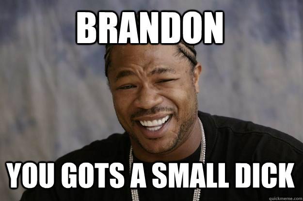 Brandon You gots a small DICK  Xzibit meme