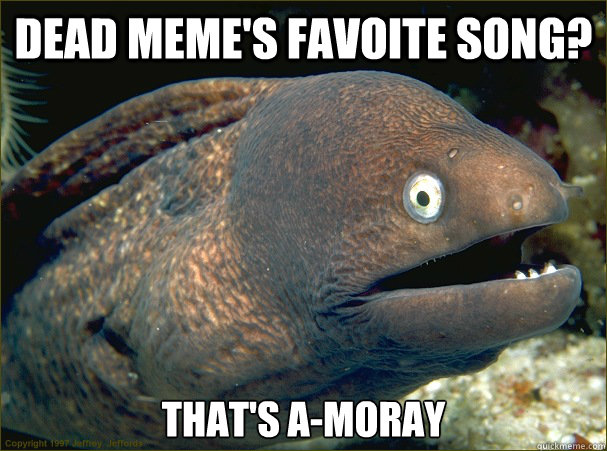 Dead Meme's favoite song? That's A-Moray - Dead Meme's favoite song? That's A-Moray  Bad Joke Eel