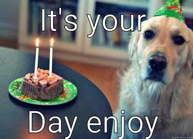 IT'S YOUR DAY ENJOY Sad Birthday Dog