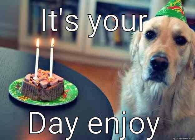 IT'S YOUR DAY ENJOY Sad Birthday Dog