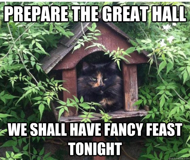 Our Top Picks For Preparing A Feast: Prepare The Great Hall We Shall Have Fancy Feast Tonight