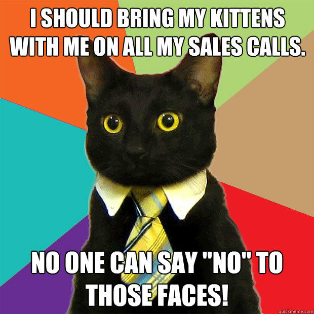 I should bring my kittens with me on all my sales calls. No one can say