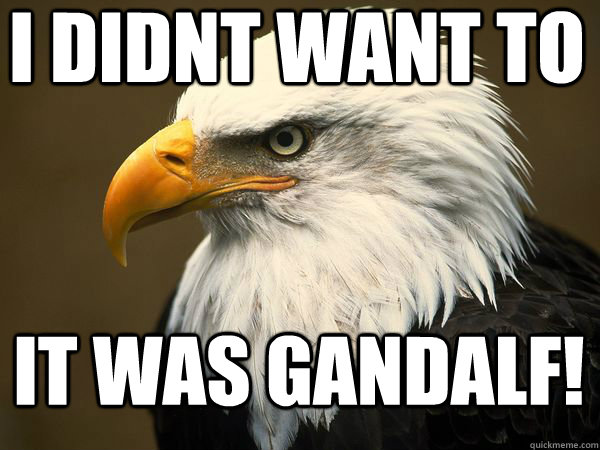 i didnt want to It was Gandalf!