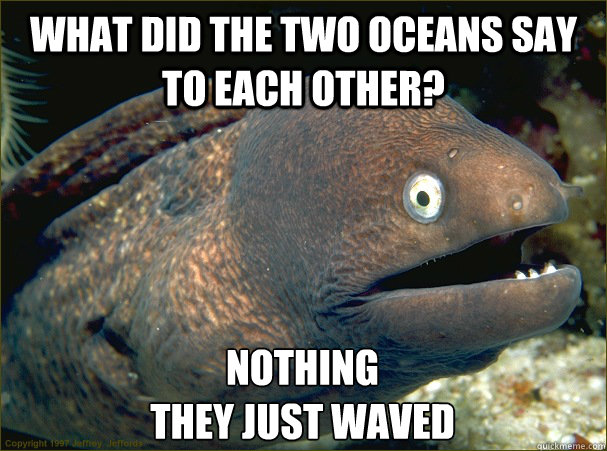 What did the two oceans say to each other? Nothing they just waved - What did the two oceans say to each other? Nothing they just waved  Bad Joke Eel