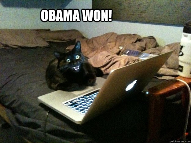 OBAMA WON! - OBAMA WON!  excited computer cat