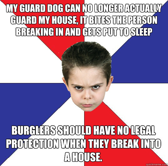 My guard dog can no longer actually guard my house, it bites the person breaking in and gets put to sleep burglers should have no legal protection when they break into a house.