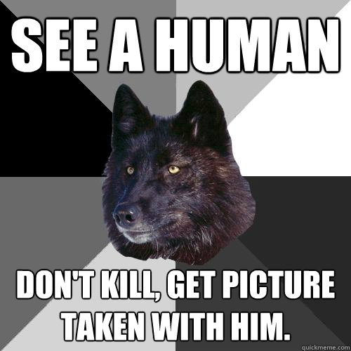 See a Human Don't kill, Get picture taken with him.