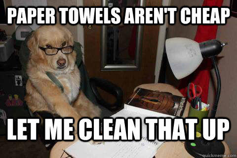 Paper towels aren't cheap Let me clean that up  Financial Advice Dog