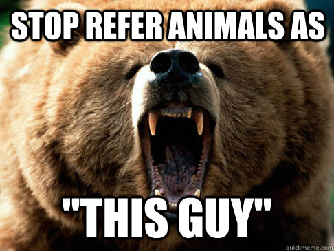 stop refer animals as