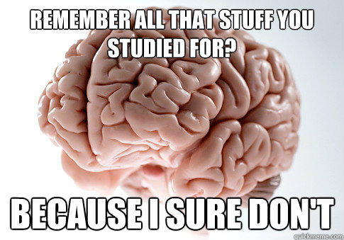 Remember all that stuff you studied for? Because I sure don't - Remember all that stuff you studied for? Because I sure don't  Scumbag Brain