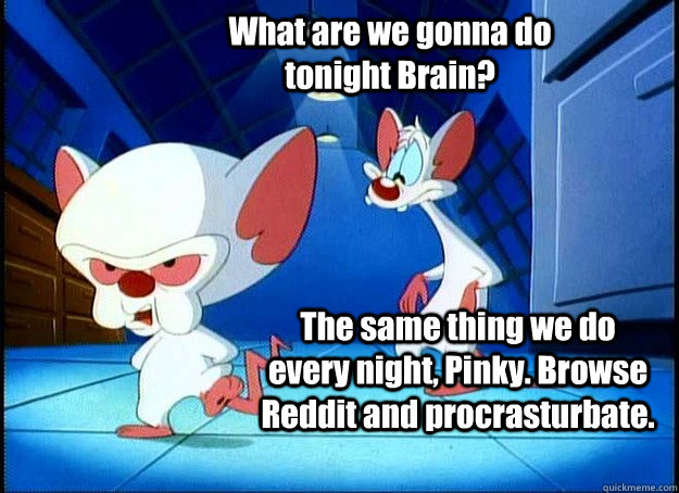 What are we gonna do tonight Brain? The same thing we do every night, Pinky. Browse Reddit and procrasturbate. - What are we gonna do tonight Brain? The same thing we do every night, Pinky. Browse Reddit and procrasturbate.  Pinky and the Brain