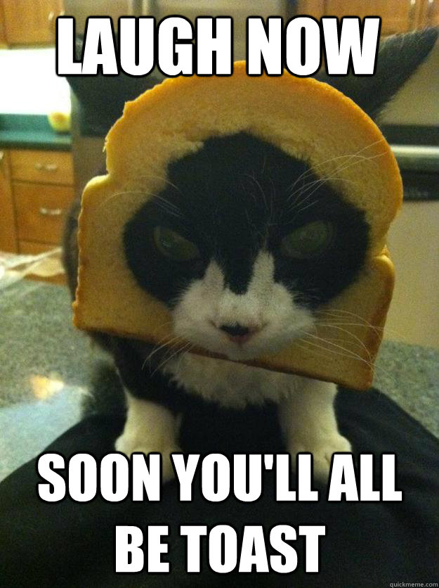 Laugh now Soon you'll all be toast  Angry Breaded Cat