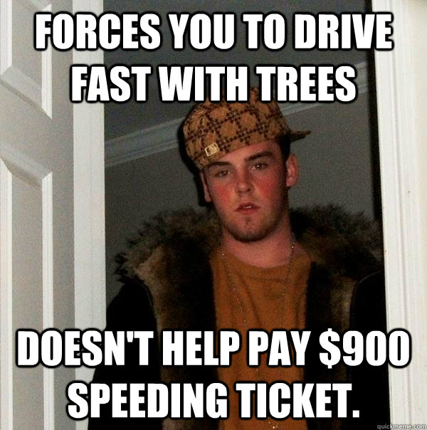 forces you to drive fast with trees doesn't help pay $900 speeding ticket. - forces you to drive fast with trees doesn't help pay $900 speeding ticket.  Scumbag Steve