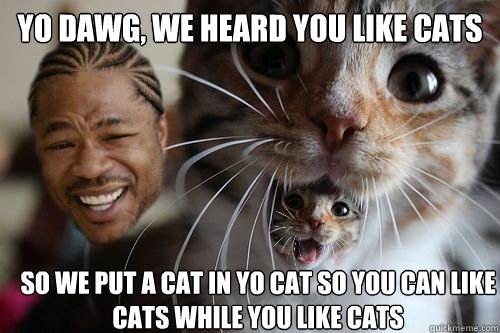 Yo dawg, we heard you like cats So we put a cat in yo cat so you can like cats while you like cats - Yo dawg, we heard you like cats So we put a cat in yo cat so you can like cats while you like cats  Yo dawg, we heard you like cats