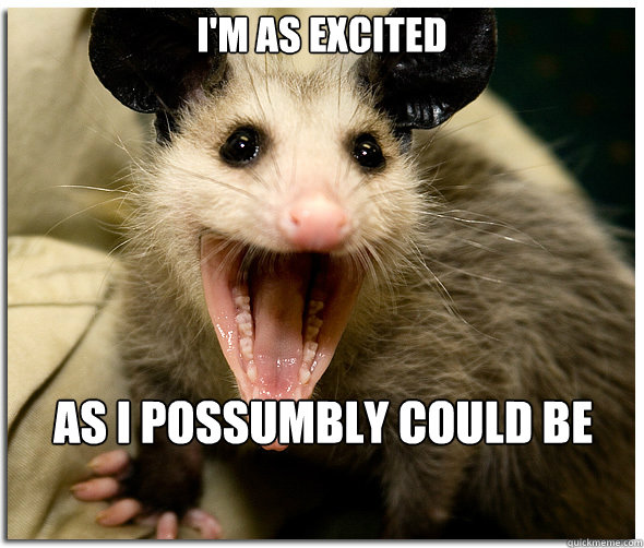 I'm as excited as I possumbly could be  Over-Excited Possum