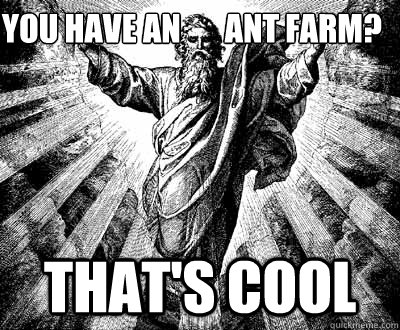 You Have An Ant Farm Thats Cool Unimpressed God Quickmeme