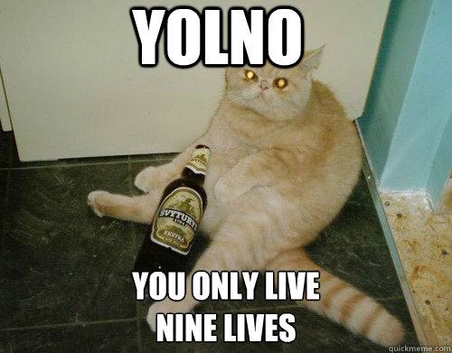 YOLNO YOU ONLY LIVE  NINE LIVES