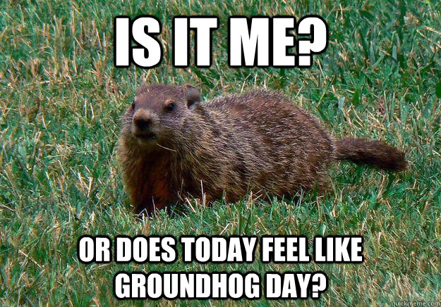 Is it me? Or does today feel like Groundhog Day? - Is it me? Or does today feel like Groundhog Day?  Groundhog Day