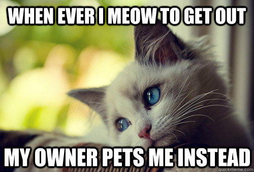 When ever I meow to get out My owner pets me instead - When ever I meow to get out My owner pets me instead  First World Cat Problems