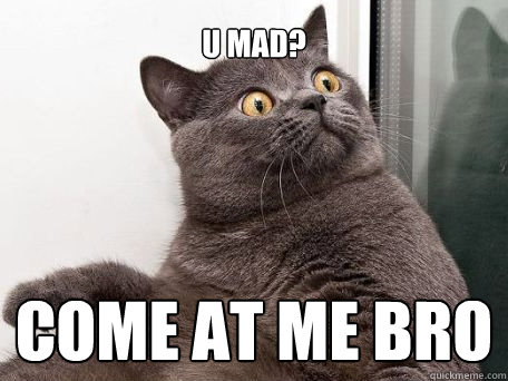 U mad? come at me bro - U mad? come at me bro  conspiracy cat