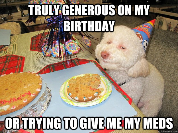 truly generous on my birthday or trying to give me my meds - truly generous on my birthday or trying to give me my meds  Skeptical Dog