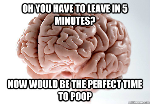 Oh you have to leave in 5 minutes? now would be the perfect time to poop - Oh you have to leave in 5 minutes? now would be the perfect time to poop  Scumbag Brain