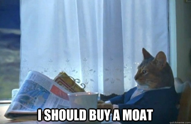 I should buy a moat -  I should buy a moat  Sophisticated Cat