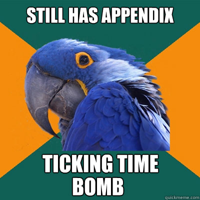 STILL HAS APPENDIX TICKING TIME  BOMB - STILL HAS APPENDIX TICKING TIME  BOMB  Paranoid Parrot