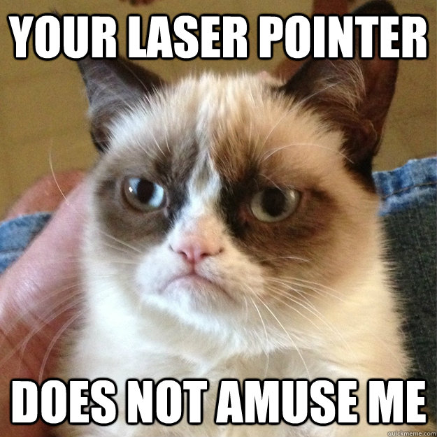 your laser pointer does not amuse me - your laser pointer does not amuse me  Misc