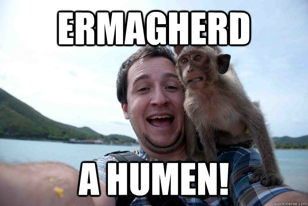 Ermagherd A humen! - Ermagherd A humen!  funny monkey
