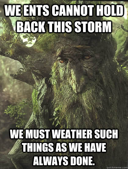 We Ents cannot hold back this storm We must weather such things as we have always done.