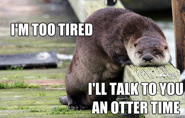 I'm too tired I'll talk to you an otter time - I'm too tired I'll talk to you an otter time  Tired Otter