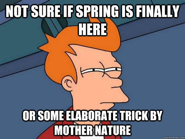 Not sure if spring is finally here Or some elaborate trick by mother nature - Not sure if spring is finally here Or some elaborate trick by mother nature  Futurama Fry