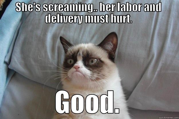 Grumpy Cat S On Birth Quickmeme