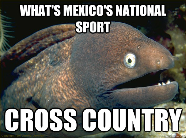 what's mexico's national sport cross country - what's mexico's national sport cross country  Bad Joke Eel
