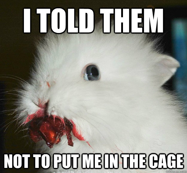 I told them not to put me in the cage - I told them not to put me in the cage  Psycho Rabbit