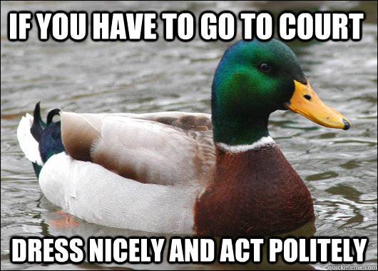 If you have to go to court dress nicely and act politely - If you have to go to court dress nicely and act politely  Actual Advice Mallard