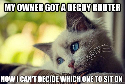 my owner got a decoy router now I can't decide which one to sit on  First World Problems Cat