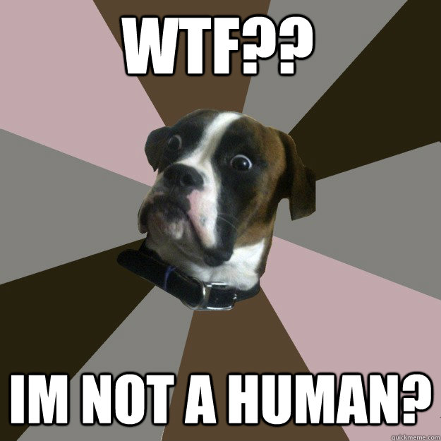 wtf?? im not a human? - wtf?? im not a human?  Genuinely Surprised Dog