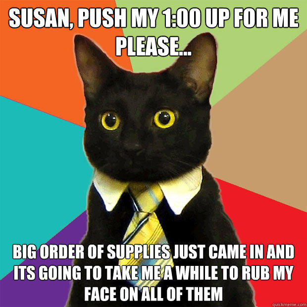 Susan, push my 1:00 up for me please... big order of supplies just came in and its going to take me a while to rub my face on all of them - Susan, push my 1:00 up for me please... big order of supplies just came in and its going to take me a while to rub my face on all of them  Business Cat