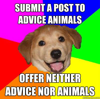 Submit a post to advice animals offer neither advice nor animals  Advice Dog