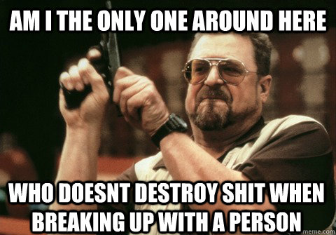 Am I the only one around here who doesnt destroy shit when breaking up with a person - Am I the only one around here who doesnt destroy shit when breaking up with a person  Am I the only one