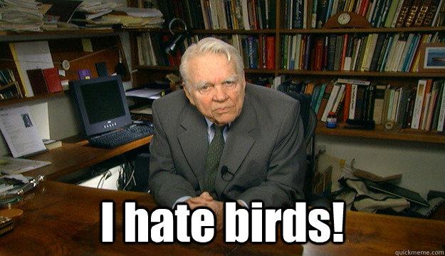 I hate birds!