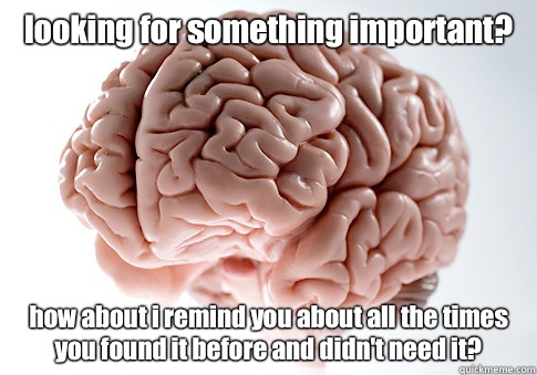 looking for something important? how about i remind you about all the times you found it before and didn't need it? - looking for something important? how about i remind you about all the times you found it before and didn't need it?  Scumbag Brain