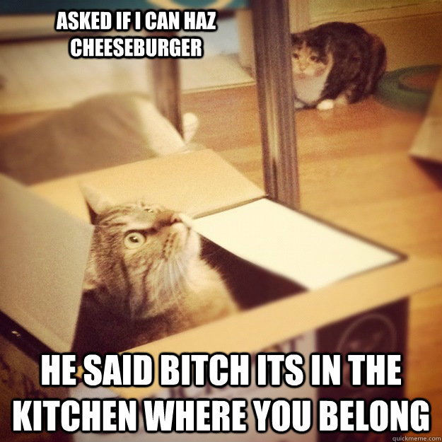 asked if i can haz cheeseburger he said bitch its in the kitchen where you belong