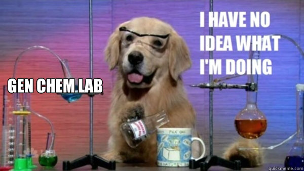 Gen Chem Lab