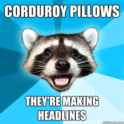 CORDUROY PILLOWS THEY'RE MAKING HEADLINES - CORDUROY PILLOWS THEY'RE MAKING HEADLINES  Lame Pun Coon
