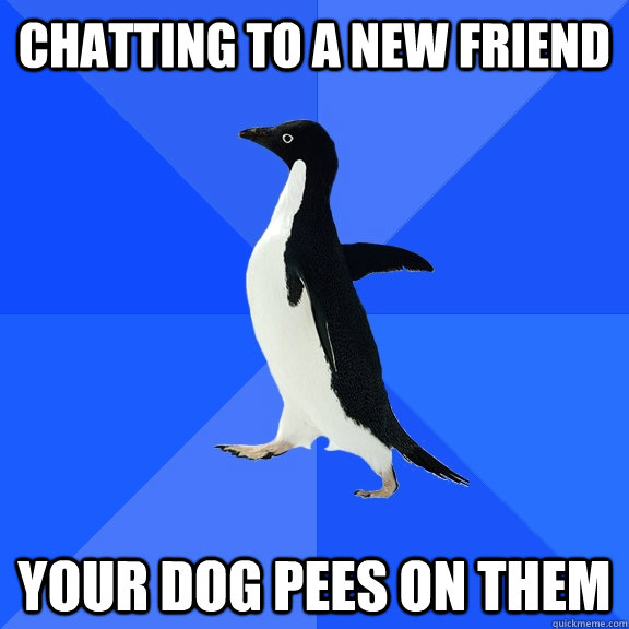 chatting to a new friend your dog pees on them - chatting to a new friend your dog pees on them  Socially Awkward Penguin